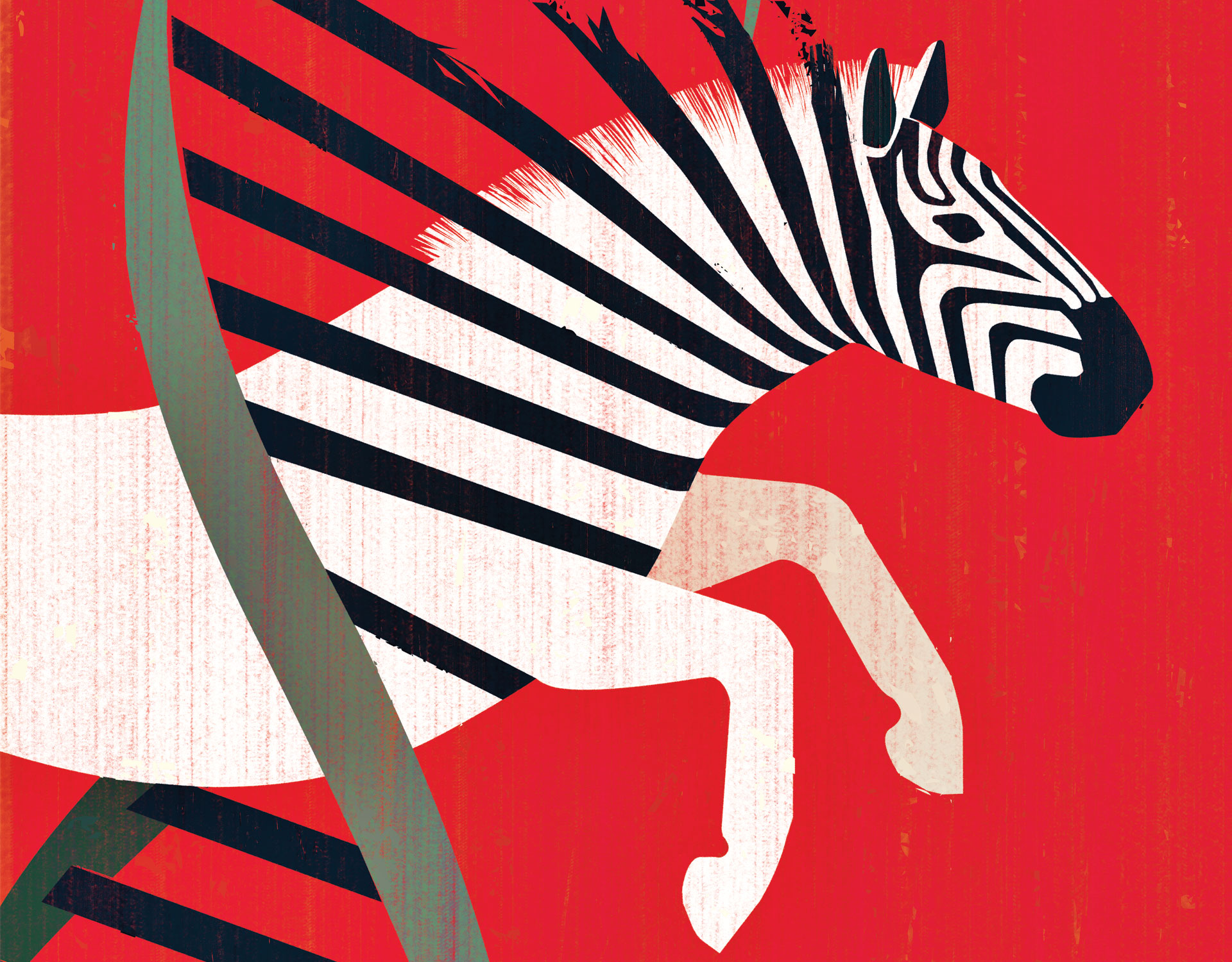 zebra illustration by Joey Guidone