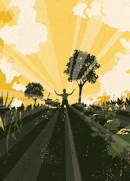 Illustration of a man in a field with a wheelbarrow, raising up his arms as beams of light shine forth