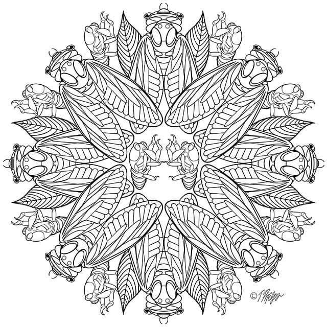 The Magic of Mandalas | Johns Hopkins Health Review